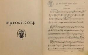 Concertul de Anul Nou 2014_02