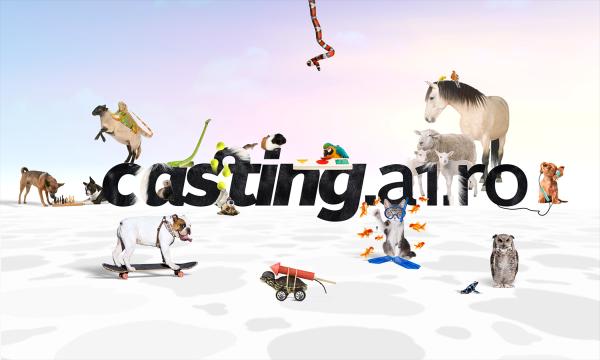 BestPet_CastingAdresa_comp