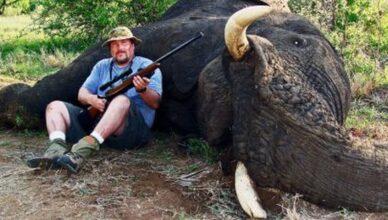 vânătoarea de elefanţi